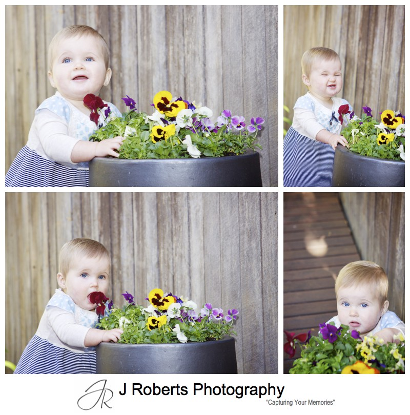 Little girl playing with potted pansies - family portrait photography sydney