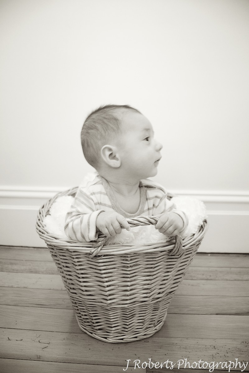 Baby in basket - baby portrait photography sydney