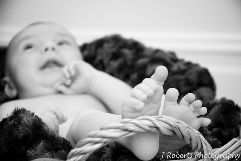 Baby lying in basket with focus on feet - baby portrait photography sydney