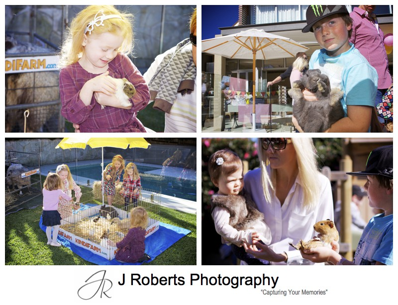 Children petty kindifarm animals at birthday party - party photography sydney