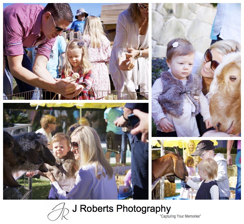 Children feeding farm animals at themed birthday party - party photography sydney