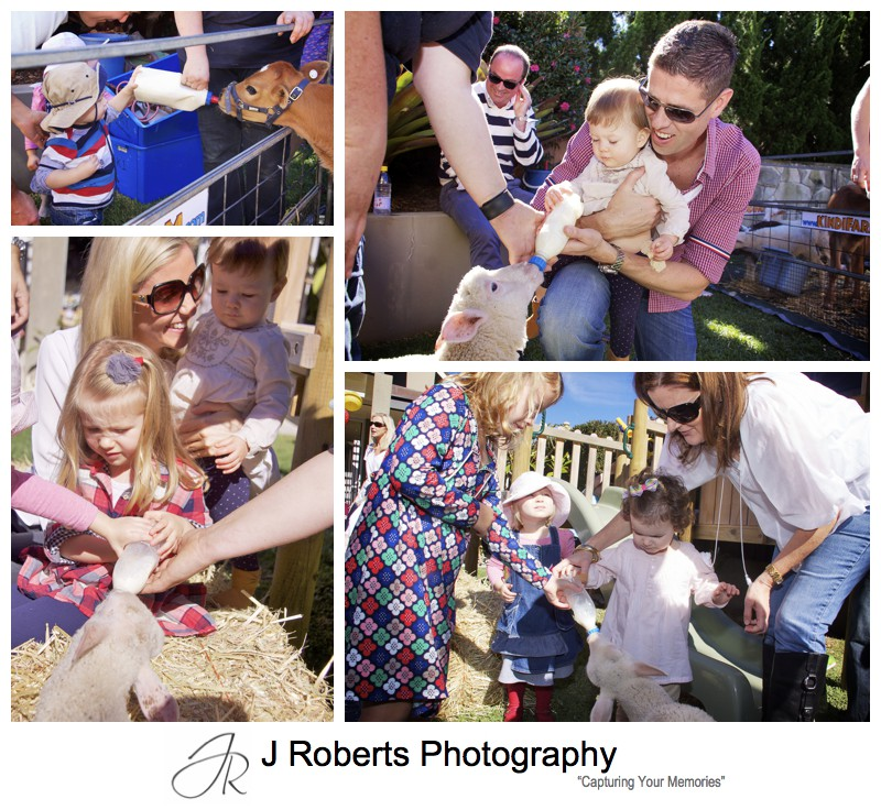 Kids giving animals milk bottles at children's birthday party - party photography sydney