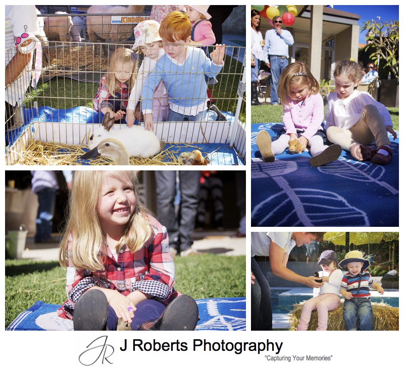 Toddlers petting animals at childs birthday party - party photography sydney