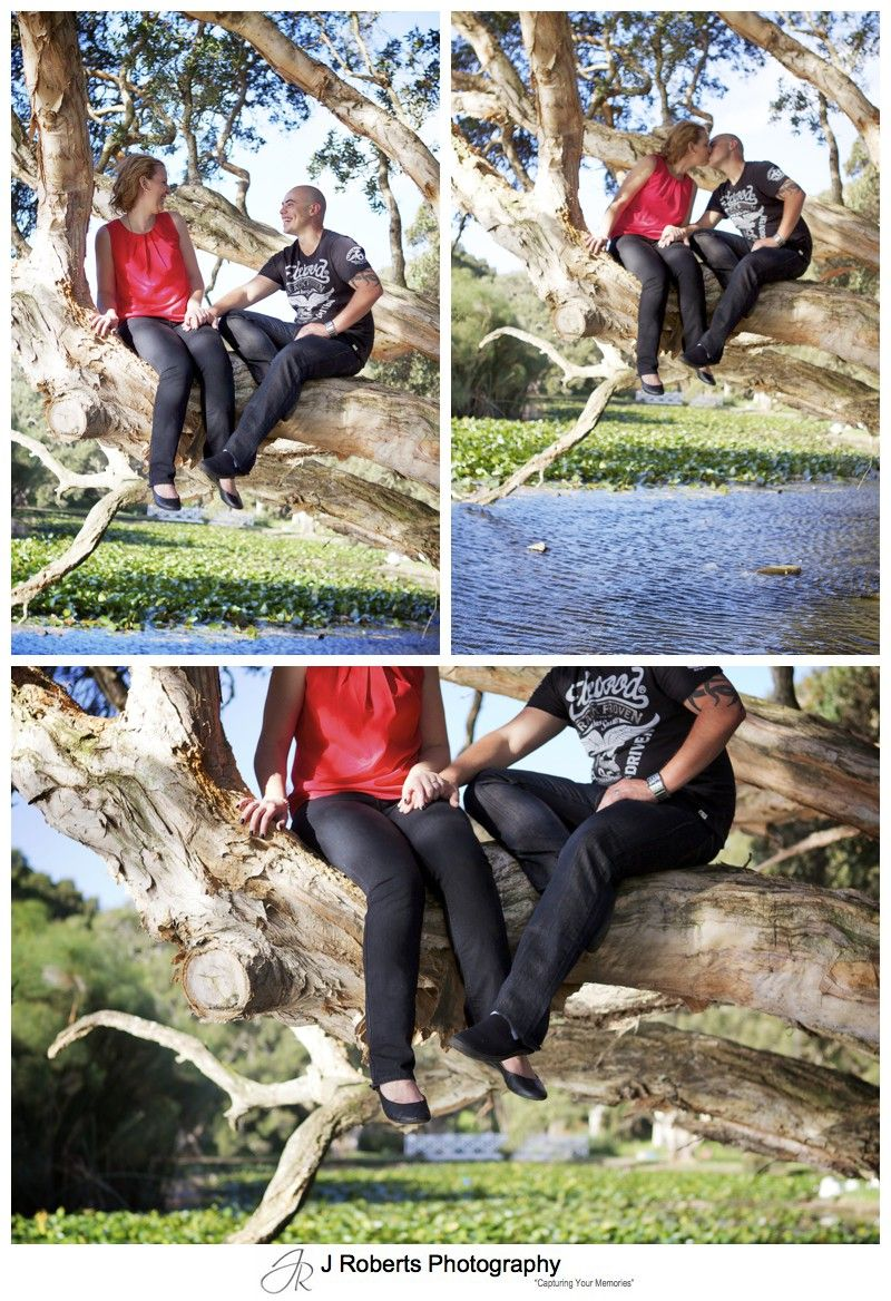 romantic couple up a tree in centennial park and kissing - couple portrait photography - sydney