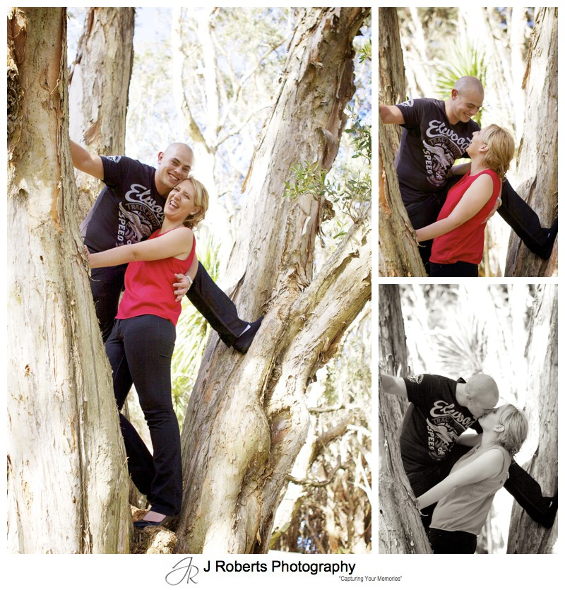 couple climbing a tree and kissing in centennial park - couple portrait photography - sydney