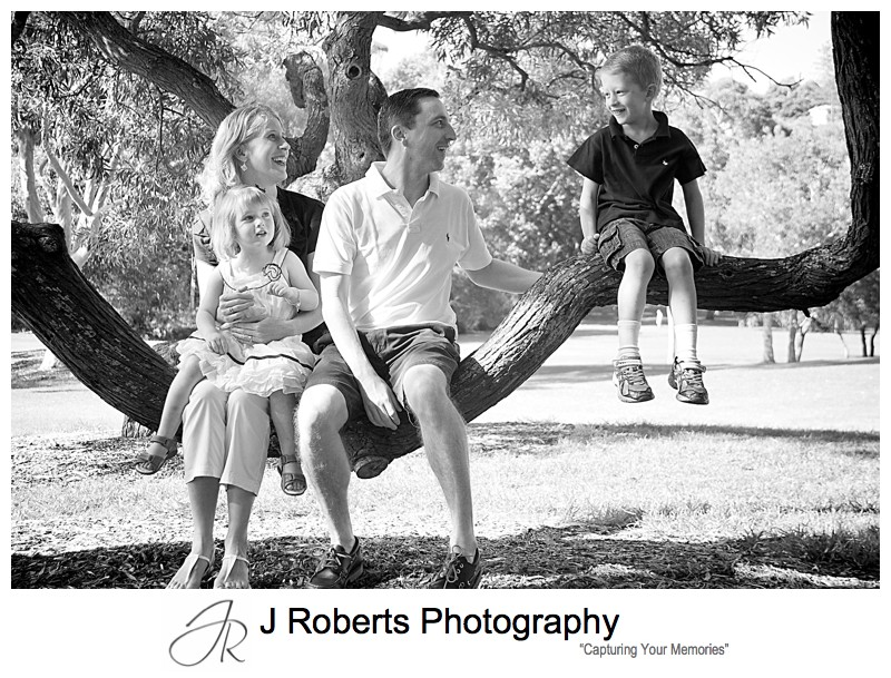 Family portrait in a tree - family portrait photography sydney