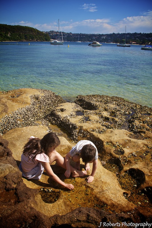 kids playing in the rock pools - family portrait photography