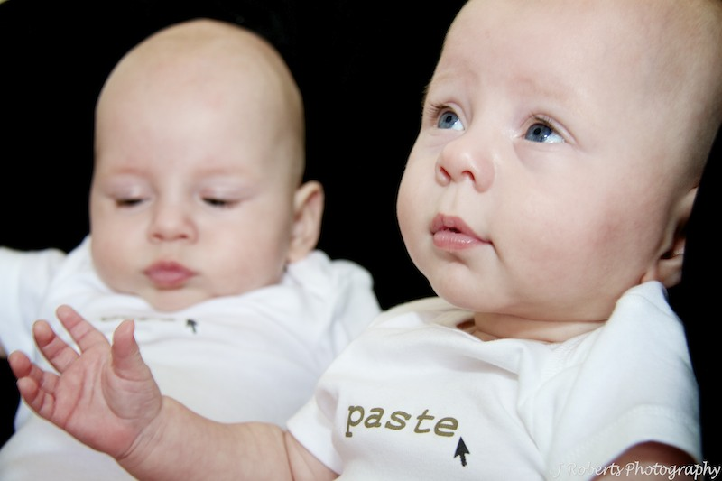 Twin boys - family portrait photography