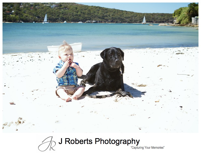 Little boy sitting on the beach with his dog - sydney family portrait photographer