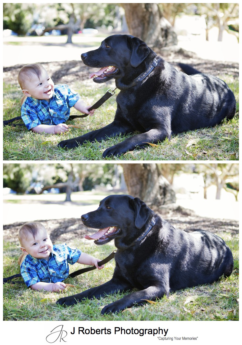 Little boy with his dog - sydney family portrait photographer