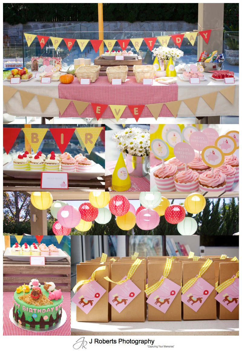 Theming layout of farm themed birthday party - party photography sydney