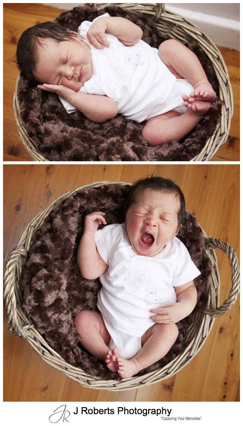 Newborn baby portraits in wicker basket - newborn baby portrait photography sydney
