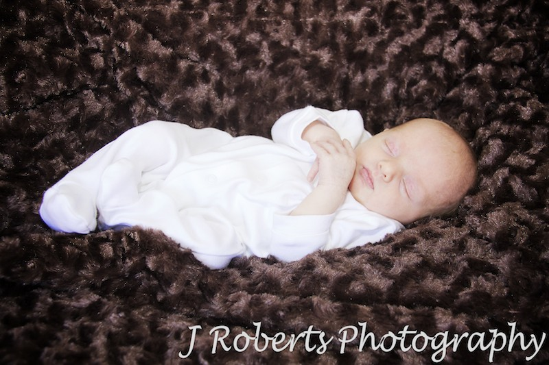 Newborn baby sleeping in cuddly rug - newborn baby portrait photography sydney
