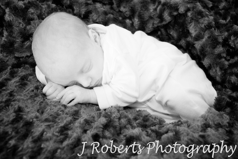 B&W Baby Portrait snuggled in faux fur - baby portrait photography sydney