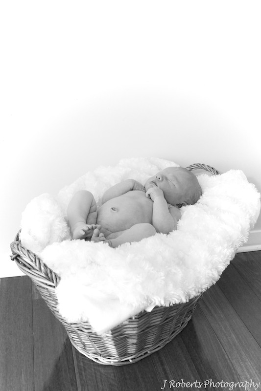 baby asleep in a basket - newborn portrait photography