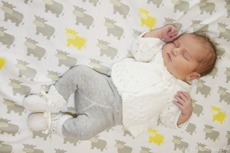 Newborn baby on cow blanket - newborn baby portrait photography sydney