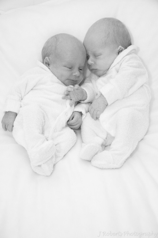 Newborn Baby Boy Twins - Newborn portrait photography sydney