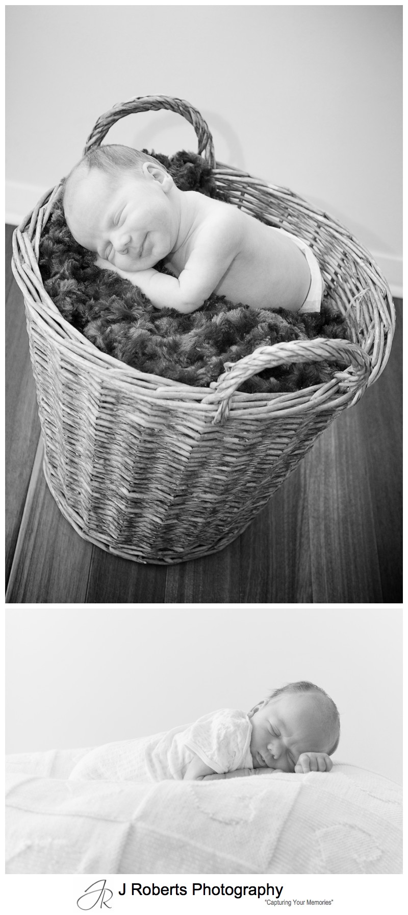 Baby portrait photography in a basket - newborn baby portrait photography sydney