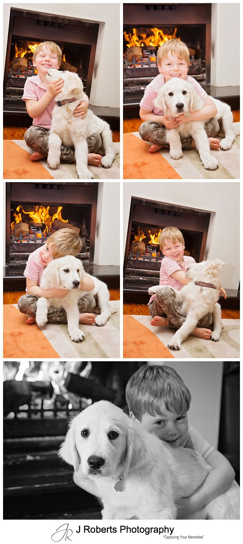 Professional Puppy Dog Portrait Photography Sydney