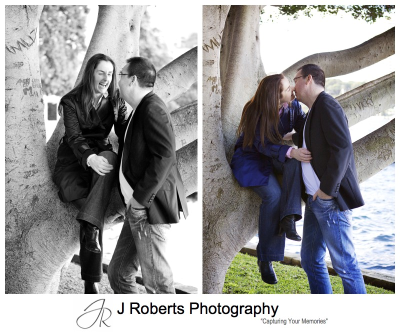 Couple kissing in a tree - pre wedding portraits sydney
