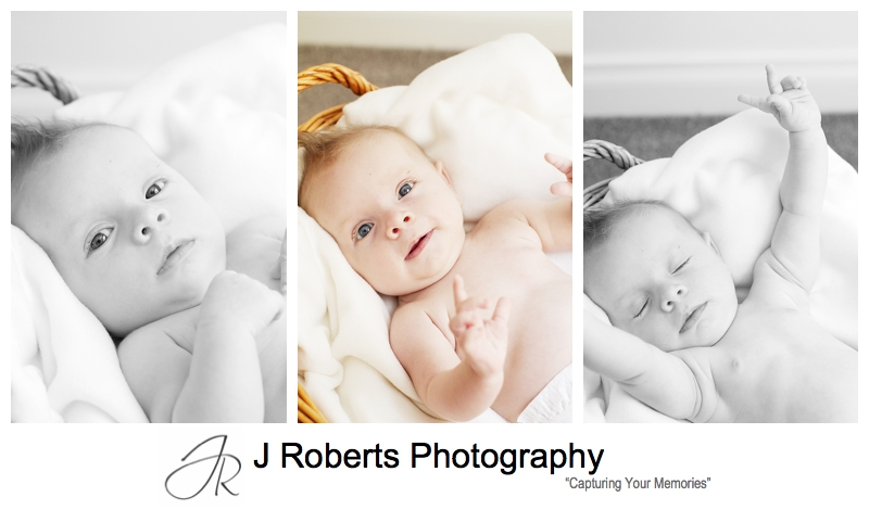 Baby girl portraits in a basket - sydney baby photographer