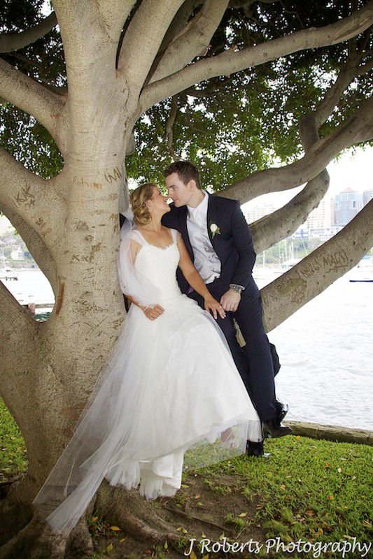 Bride and groom kissing in a tree - wedding photography sydney