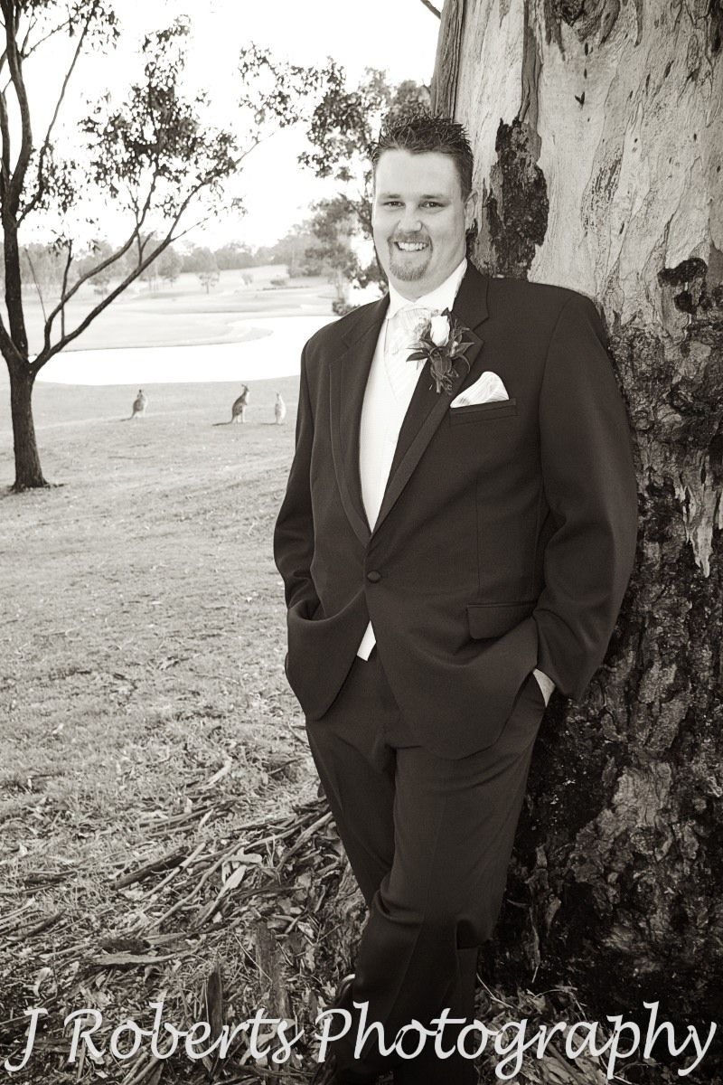Sepia groom leaning on gum tree with kangaroos watching - wedding photography sydney
