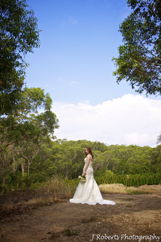 Bride in a bush setting - wedding photography sydney