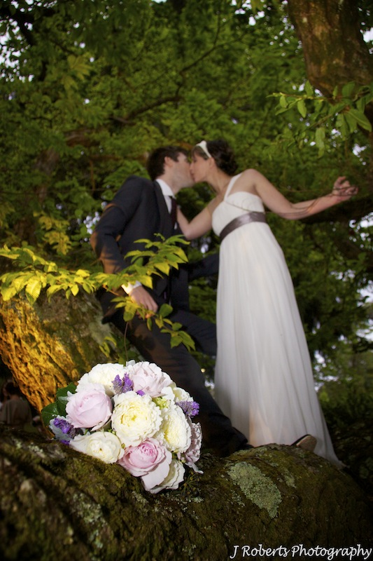 Bride and groom kissing in a tree - wedding photography