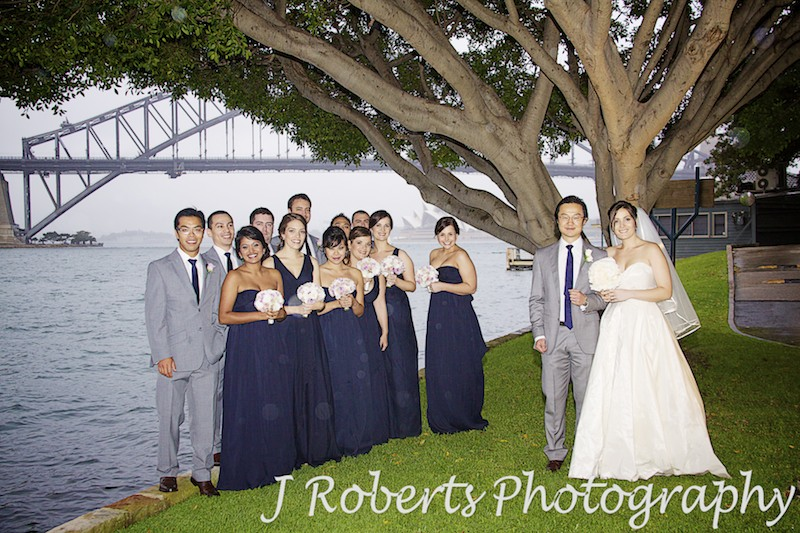 Bridal party under a tree next to Sydney Harbour in the rain - wedding photography sydney