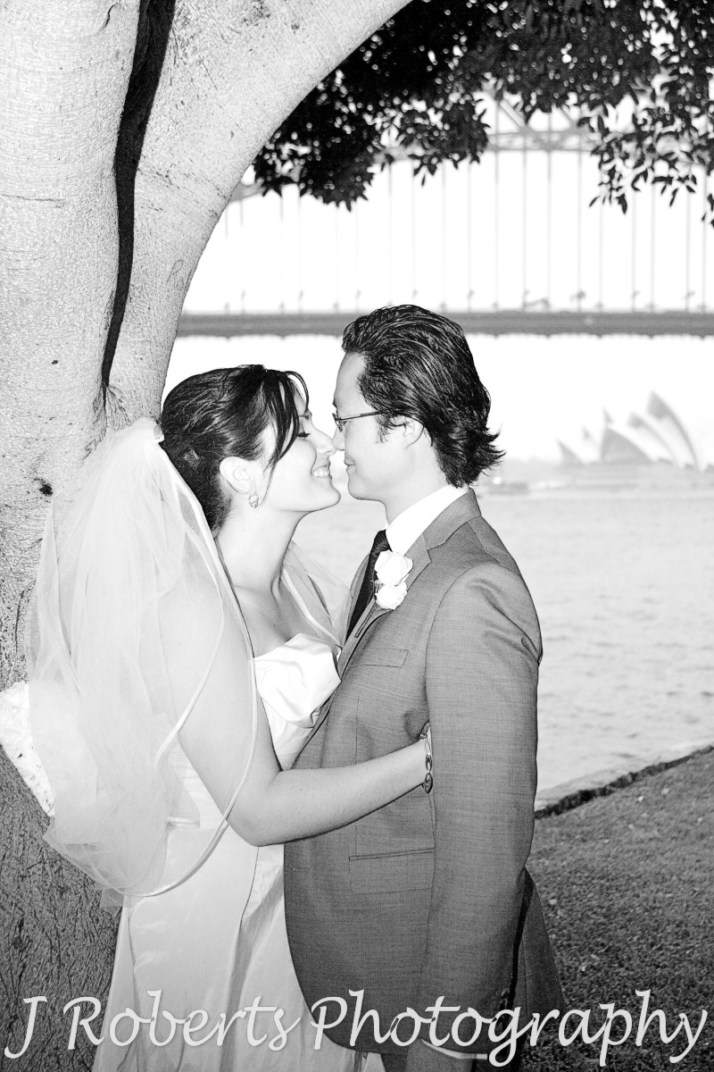 Bride and groom about to kiss - wedding photography sydney
