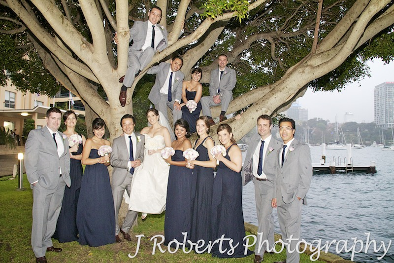 Bridal party climbing a tree at Blues Point Sydney - wedding photography sydney
