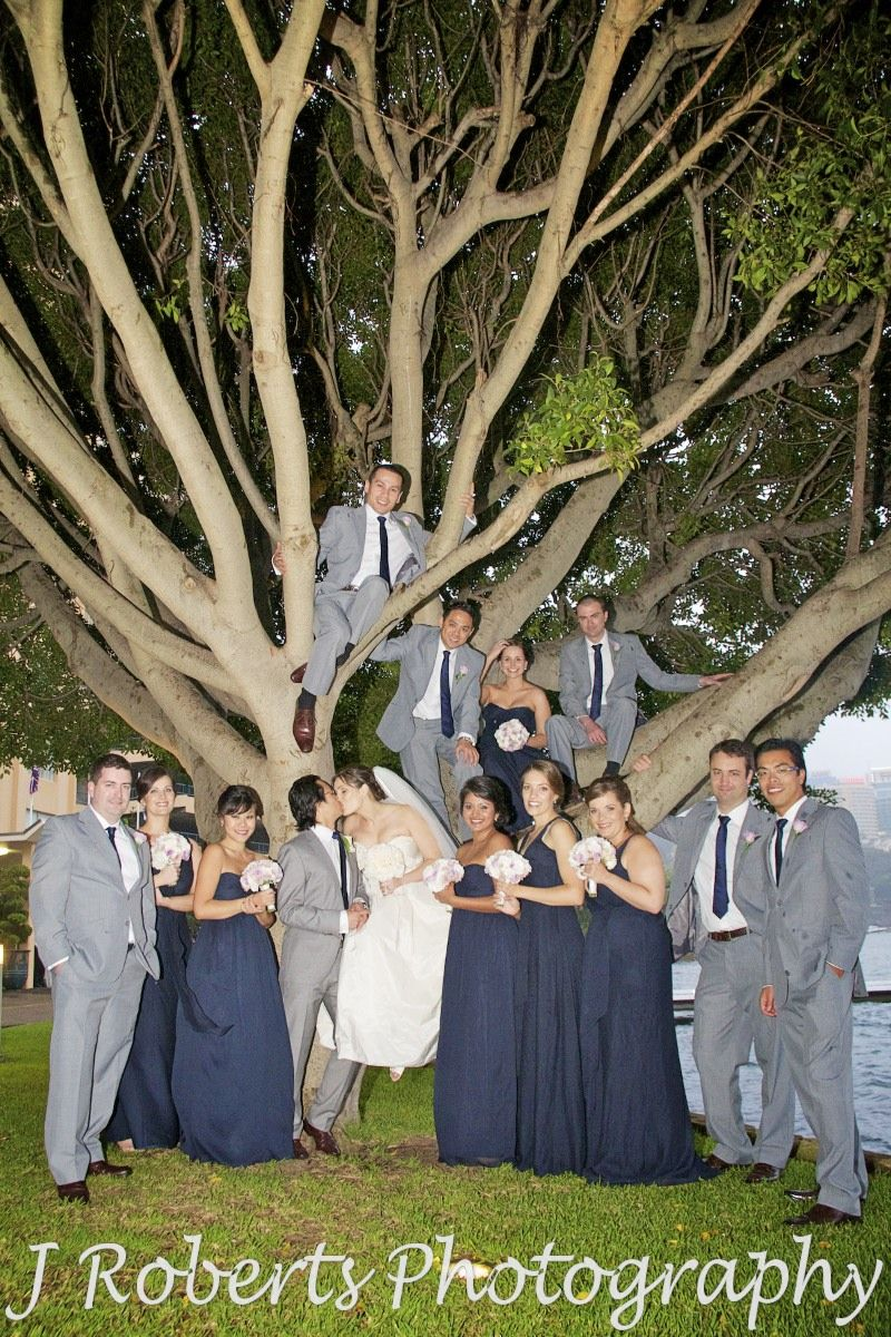 Bride and groom kissing in a tree with bridal party around - wedding photography sydney