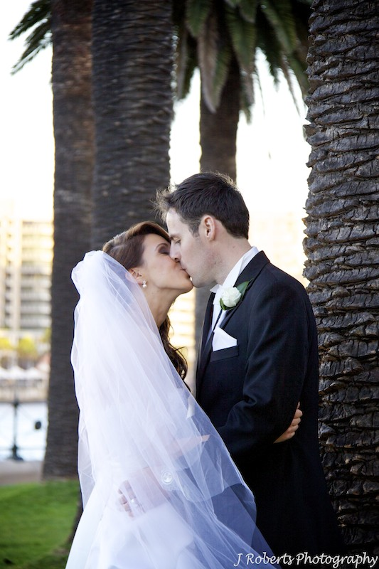 Bride and groom kissing under palm trees The Rocks w Circular Quay behind - wedding photography sydney