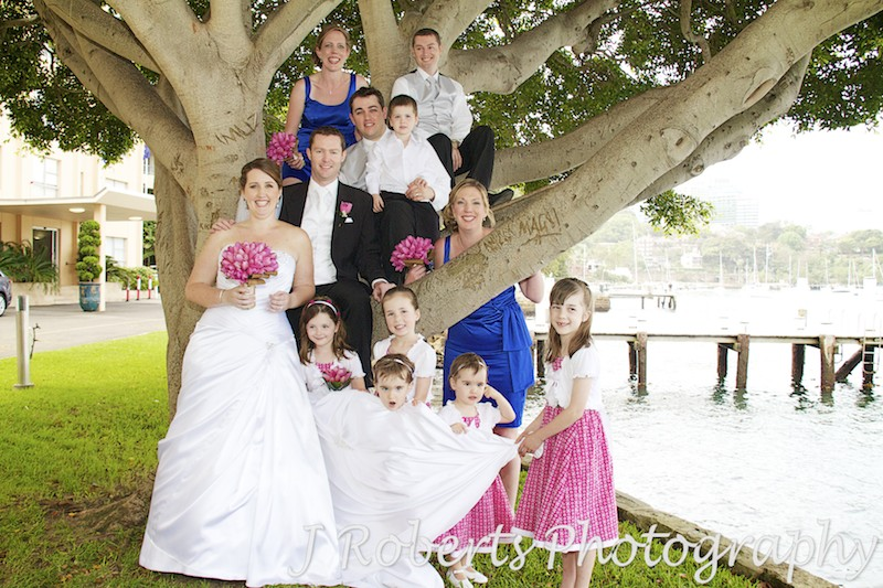 Bridal party in a tree outside Harbourside Apartments Blues Point - wedding photography sydney